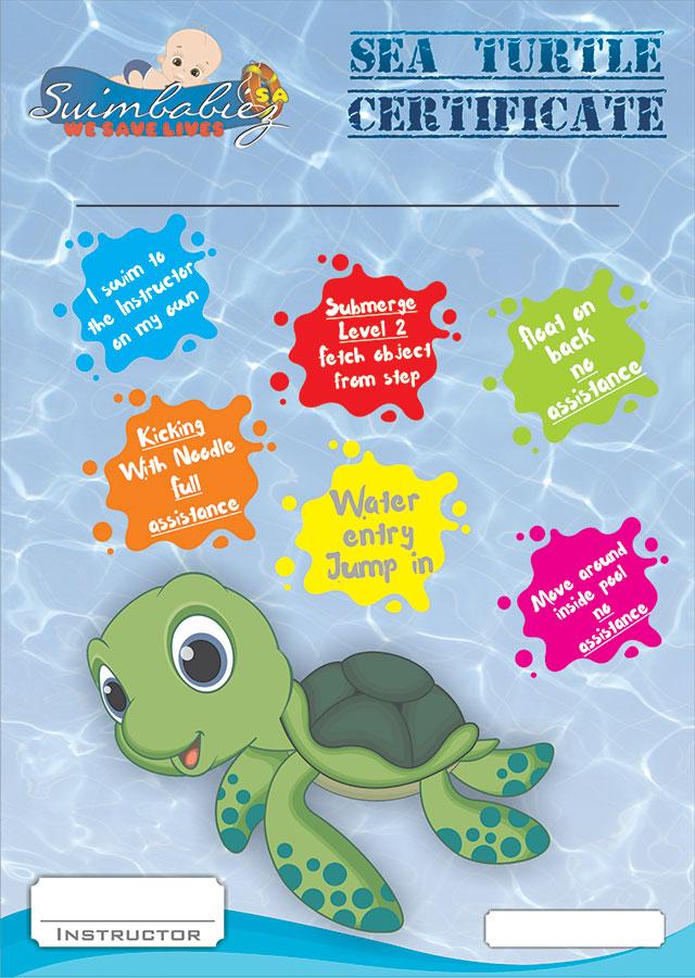 Babies Sea Turtle Certificate